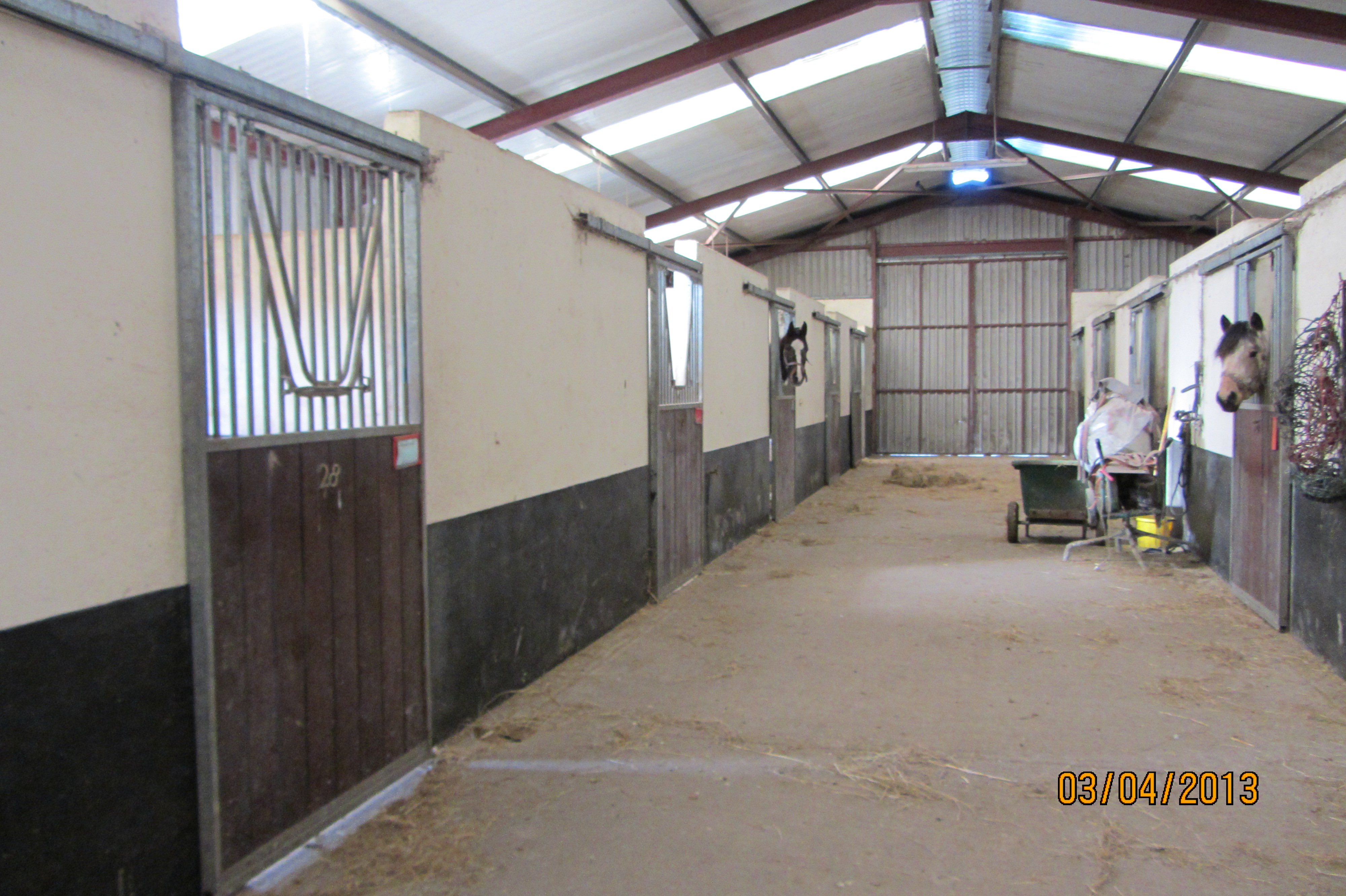 Country House and equestrian holding – O'Brien Auctioneers