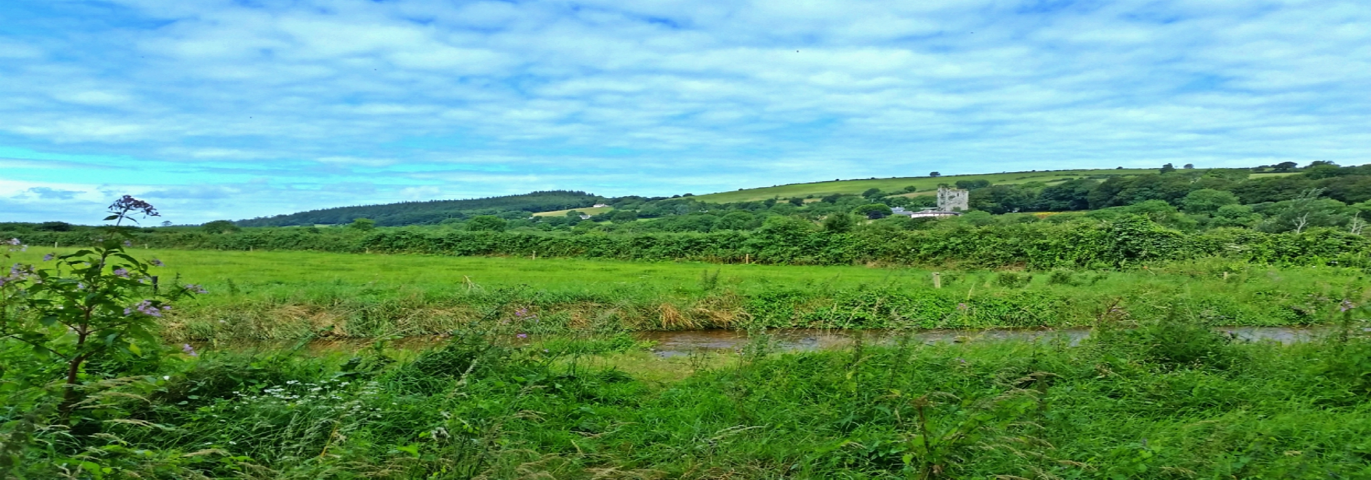 West Waterford Agricultural Land
